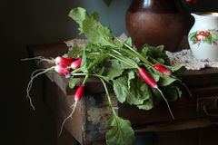 Fresh garden radish. Top view. Fresh garden radish with a tops of vegetable on a wooden table. Top view Royalty Free Stock Image