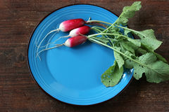 Fresh garden radish. Top view. Fresh garden radish with a tops of vegetable on a wooden table. Top view Royalty Free Stock Photos