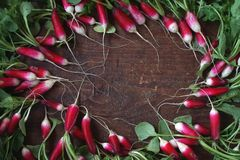 Fresh garden radish. Top view. Fresh garden radish with a tops of vegetable on a wooden table. Top view Royalty Free Stock Photography
