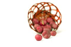 Fresh garden radish in wicker basket. Selective focus. Isolated on white.photo with copy space Stock Photos