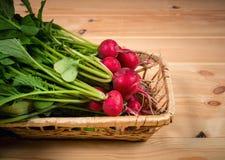 Fresh garden radish in wicker basket. Selective focus. Fresh garden radish in wicker basket on wooden table. Selective focus Stock Photography
