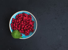 Fresh garden raspberries in blue ceramic bowl over. Grunge black background, top view, copy space Stock Images