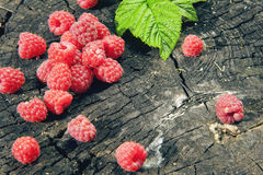 Fresh garden raspberries on a wooden background. Fresh garden raspberries, wooden background Royalty Free Stock Photography