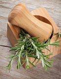 Fresh garden rosemary in mortar Royalty Free Stock Photo