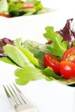 Fresh garden salad Royalty Free Stock Photo