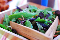 Fresh Garden Salad. This image is of a very fresh, leafy, garden salad Royalty Free Stock Images