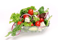 Fresh garden salad Royalty Free Stock Image