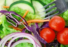 Fresh Garden Salad. With tomatoes, lettuce, onion and cucumbers Royalty Free Stock Image