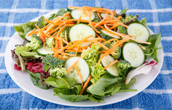 Fresh Garden Salad with Cucumbers Broccoli and Carrots Stock Photography