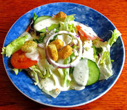 Fresh Garden Salad. A Fresh Garden Salad with Dressing and Croutons royalty free stock photography