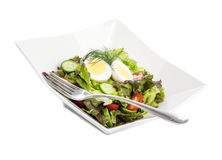 Fresh Garden Salad with a Hard-boiled Egg on Top #2 Royalty Free Stock Photography
