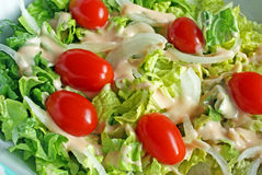 Fresh Garden Salad Royalty Free Stock Photography