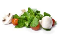 Fresh garden salad Royalty Free Stock Images
