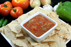 Fresh Garden Salsa Stock Photography