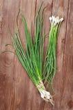 Fresh garden spring onion Stock Photo