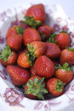 Fresh Garden Strawberries. Photographs of fresh garden strawberries in a country pattern bowl stock image