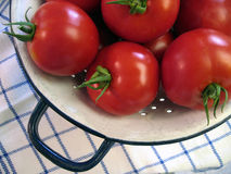 Fresh garden tomatoes. Fresh, red tomatoes in pretty colander Royalty Free Stock Photo