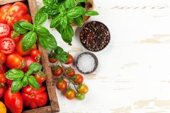 Fresh garden tomatoes and basil Royalty Free Stock Images
