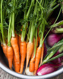 Fresh garden vegetables. Some vegetable from garden prepared for soup Royalty Free Stock Photos