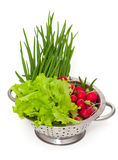 Fresh garden vegetables in a colander. Over white Royalty Free Stock Image