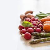 Fresh garden vegetables Stock Image