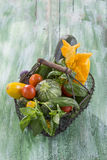 Fresh garden vegetables on iron basket on old green wooden board Royalty Free Stock Image
