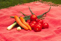 Fresh garden vegetables tomatoes, carrots and onions. Fresh garden vegetables tomatoes, carrots, onions on the red tablecloth Stock Images
