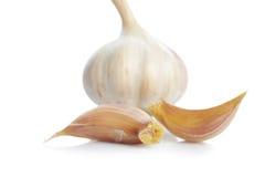 Fresh garlic Stock Image