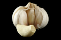 Fresh Garlic 2 Stock Image