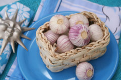 Fresh Garlic Stock Images