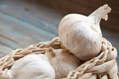 Fresh Garlic. Royalty Free Stock Image