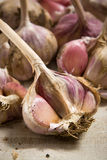 Fresh garlic. On grey cloth background Stock Photo