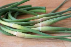 Fresh garlic arrows on wood background. Royalty Free Stock Photography