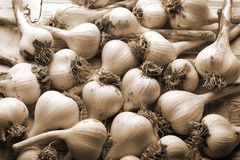 Fresh garlic background Royalty Free Stock Photo