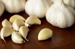 Fresh garlic. Stock Photography