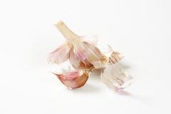Fresh garlic bulbs and cloves Stock Photos