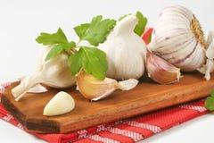 Fresh garlic bulbs and cloves Royalty Free Stock Photos