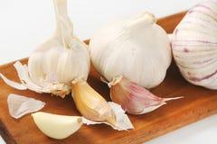Fresh garlic bulbs and cloves Stock Image