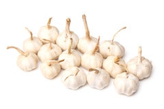 Fresh garlic bulbs. Group of fresh garlic bulbs isolated on a white studio background Stock Photography