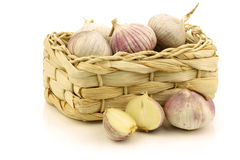 Fresh garlic bulbs and two halves Stock Photos