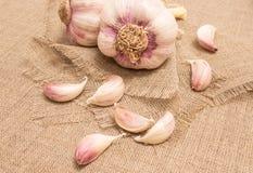 Fresh garlic on canvas close up Stock Photos