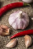Fresh garlic with chili pepper on dark background. Garlic bulbs.  Royalty Free Stock Photography