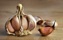Fresh garlic close up. Royalty Free Stock Images