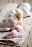 Fresh garlic Stock Photo