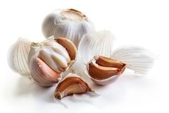 Fresh garlic with clove. Whole fresh garlic with clove isolated on white background royalty free stock photo