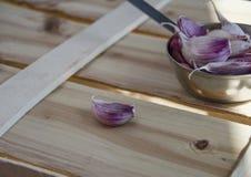 Fresh garlic clove Royalty Free Stock Photography