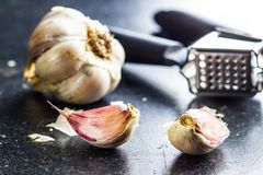 Fresh garlic and garlic presser. Fresh garlic and garlic presser on kitchen table Stock Photos