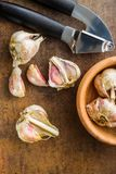 Fresh garlic and garlic presser. Fresh garlic and garlic presser on kitchen table. Top view Royalty Free Stock Images