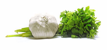 Fresh garlic with green parsley Royalty Free Stock Photos