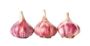 Fresh garlic heads on background. Fresh garlic heads on white background Royalty Free Stock Photography